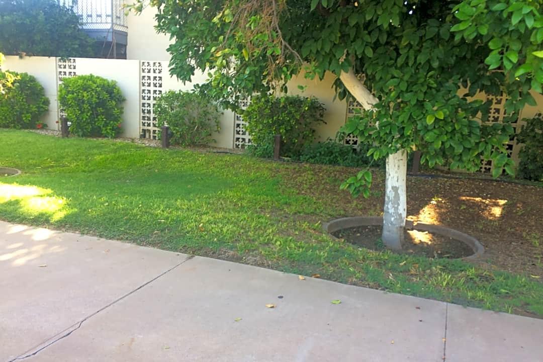 Hibiscus Apartments 5250 N 20th St Phoenix Az Apartments For Rent Rent Com
