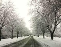 Winter at Apple Creek!