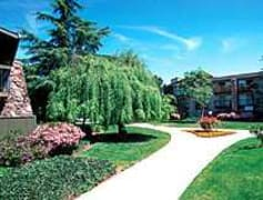Sunnyvale ca apartments for rent 189 apartments - Olive garden apartments sunnyvale ...