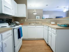Upgraded Kitchen with New Modern White Cabinets