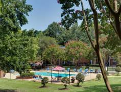 Tuscaloosa, AL 1 Bedroom Apartments for Rent - 46 Apartments | Rent.com®