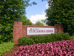 Welcome to Tuscarora Creek!