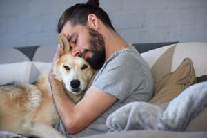 Dog-Friendly Apartments: What you Need to Know
