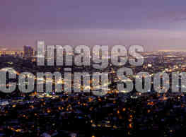831 S Harvard Boulevard - Los Angeles