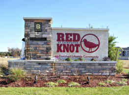 Red Knot at Edinburgh - Chesapeake