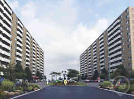 Shoregate Towers - Willowick