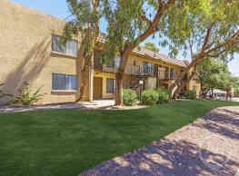 Desert Palms - Tucson