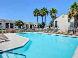 Summer Brook - San Diego