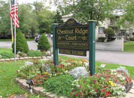 Chestnut Ridge - Amherst