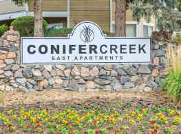 Conifer Creek - Aurora