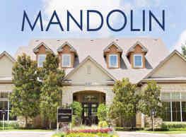 Mandolin - Euless
