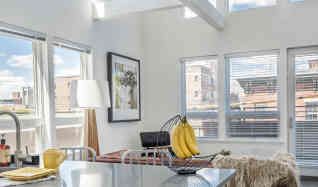 apartments for rent in new haven ct 141 rentals apartmentguide com
