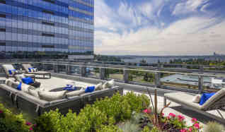 Apartments For Rent In Bellevue, WA