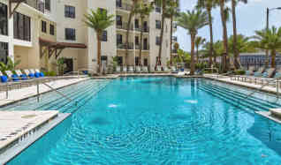 furnished apartment rentals in tampa fl