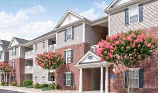Apartments for Rent in Timberlake, VA - 168 Rentals | ApartmentGuide.com