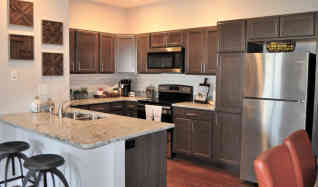 1 bedroom apartments for rent in champaign il