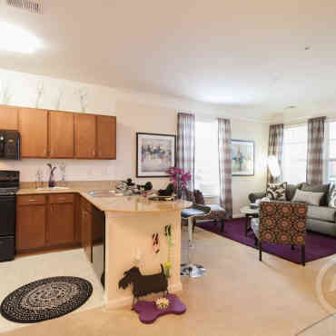 Apartment Guide Petersburg Va