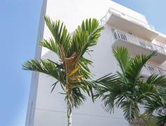 The Corridor - Miami, FL
