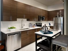 Modern Kitchens with stainless appliances
