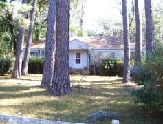 5 Avenue of Pines Jan2010 002.jpg