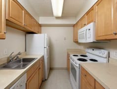 Maple Scheme Kitchen
