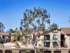 la jolla ca apartments for rent 388 apartments rent com