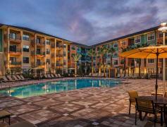 Studio Apartments For Rent In Winter Garden, FL
