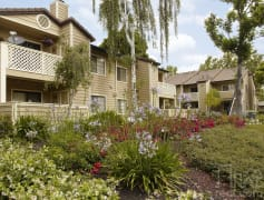 Cherrywood Apartments for Rent | San Jose, CA | Rent.com®