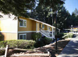 Forest Grove Apartments - Lacey