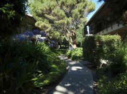 Sedona Lane Apartments - Campbell