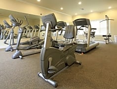 Interior-Fitness Weight Room