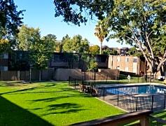 Pool / Courtyard