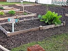 Community garden, Village Maison Townhomes, 0