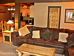Living Room, 4200 Lodgepole Cir, 0