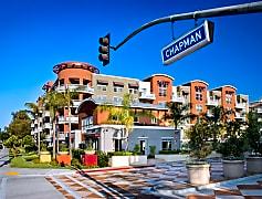 Chapman-Commons-1-e1498693876745.jpg
