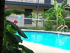 Pool, 2425 Ashdale Dr, 0