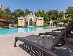 Pool, Woodland Meadow, 0