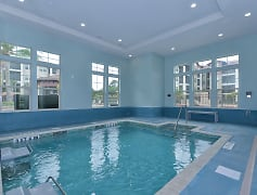 The Boulevard Apartments - Largo FL - Swim Spa