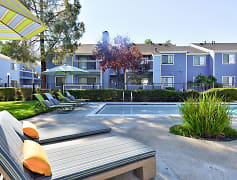 Pool, Mosaic Apartments, 0