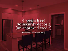 Up to 6 weeks free $0 Security Deposit *Terms and conditions apply.