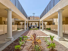 Courtyard, Monte Vista Senior Apartments, 0