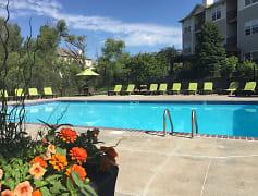 Pool, Autumn Grove, 0