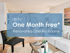 Up to one month free* on renovated one-bedrooms