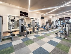 Brand New 24-HR Tech Advanced Fitness Center with Cardio and Strength Training Equipment with Yoga Room