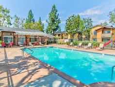 Pool, Citrus Gardens Apartments, 0