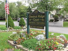 Community Signage, Chestnut Ridge Court, 0
