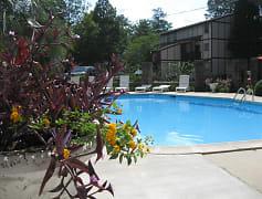 Pool, Cooper Creek Village, 0