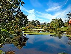 Fox Ridge at Lakeside