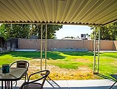 Backyard Pix.jpg