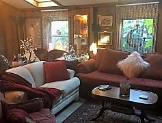 Living Room Window Views